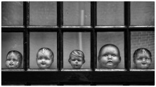 window564