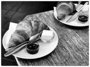 cafe525419