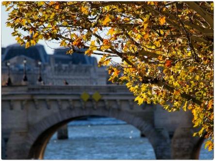 automne23