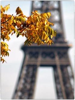 automne24