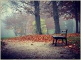 automne4569