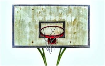 basket44
