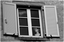 windows14