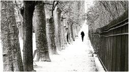 hiver45879