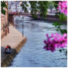Alsace215