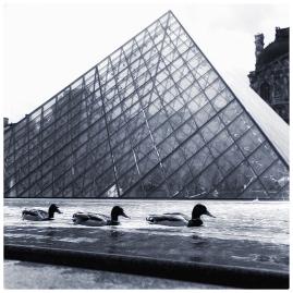 louvre1918